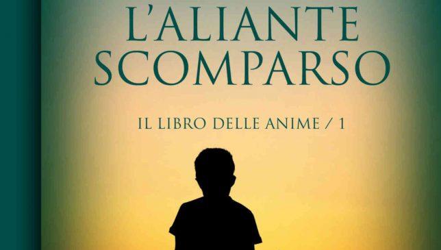 L'aliante scomparso di Maurizio Cometto